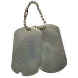 Stainless Steel 2pc Set GI Dog Tag